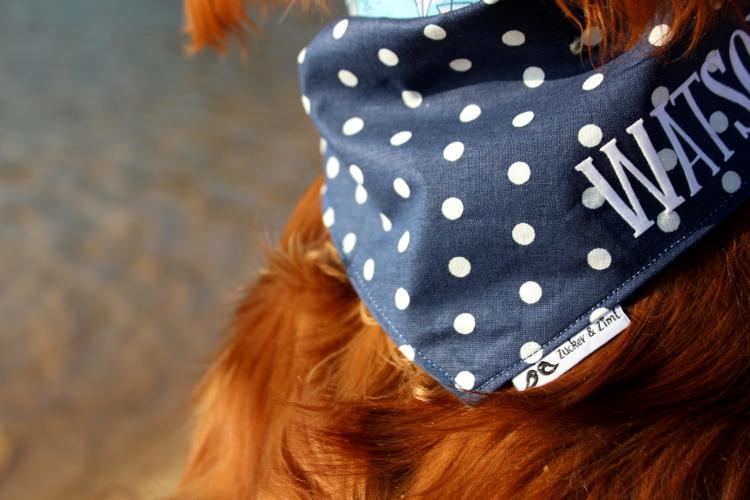 Schicke Hundehalstücher personalisiert
