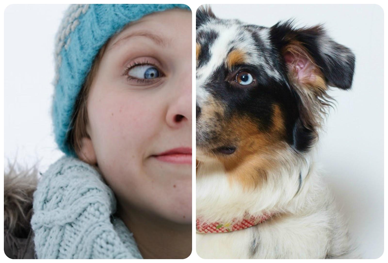 Ähnlichkeit Hund und Mensch