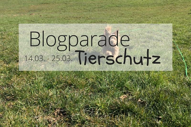 Tierschutz Blogparade