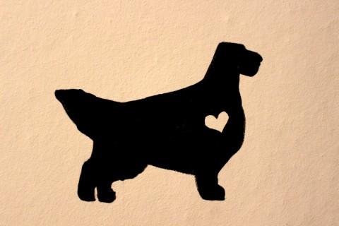 Wolltet ihr euren Hund auch schon immer mal malen? An die Wand?