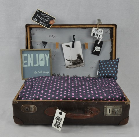 Kofferkörbchen 2.0
