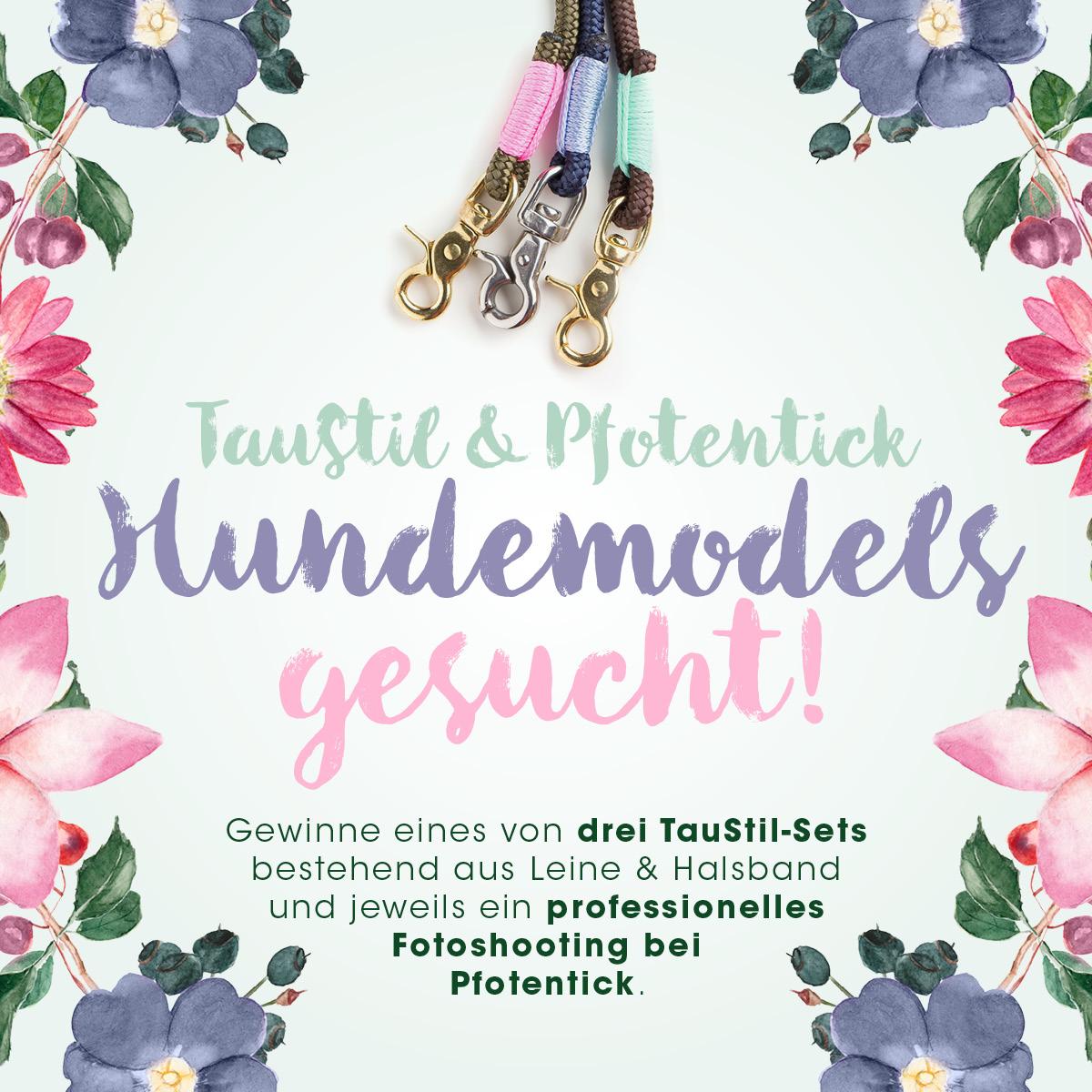 Pfotentick TausStil Gewinnspiel Blog