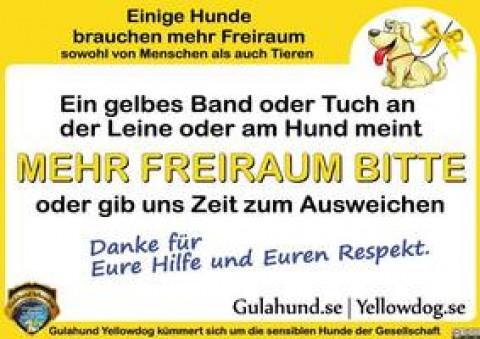 Kampagne Gelber Hund