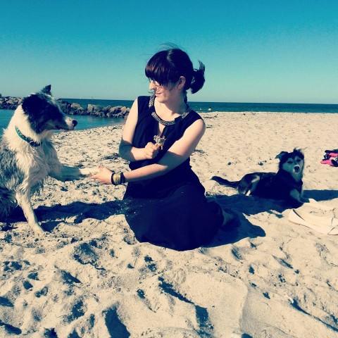 Strand-Knigge