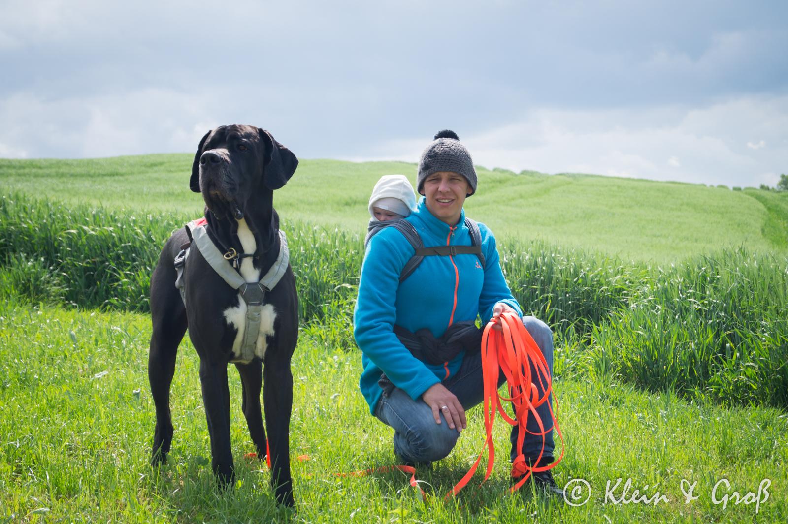 Tragetuch Baby und Hund Erfahrungen