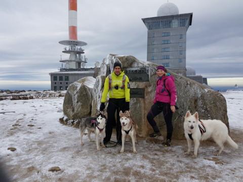 Auf 12 Pfoten zum Nordkap