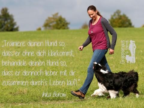 Von Hunden lernen heißt, ein besserer Mensch zu werden