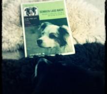 Schreck lass nach! Heike Westedts Buch rezensiert von Schulhund Käpt´n Jack