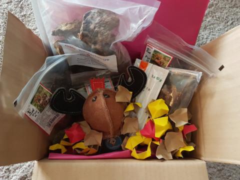 frauchensliebling testet die Nature Überraschungsbox von dogz box
