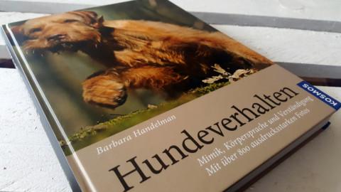 Buchvorstellung // Hundeverhalten -Mimik, Körpersprache & Verständigung