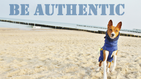 ~ be authentic // Es ist wie es ist ~