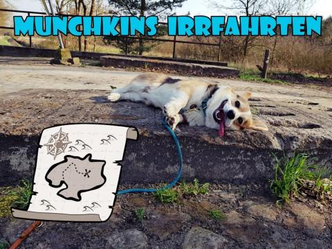 Sir Munchkins Irrfahrten – oder warum ich einen Bloodhound brauche