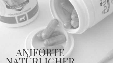 (Anzeige) Aniforte — natürlicher Schutz vor Zecken, Flöhen und Milben