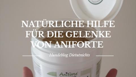 Natürliche Hilfe für die Gelenke von Aniforte (Werbung)