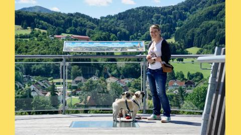 Urlaub mit Hund im Pielachtal, Niederösterreich – Ausflüge und Wanderungen