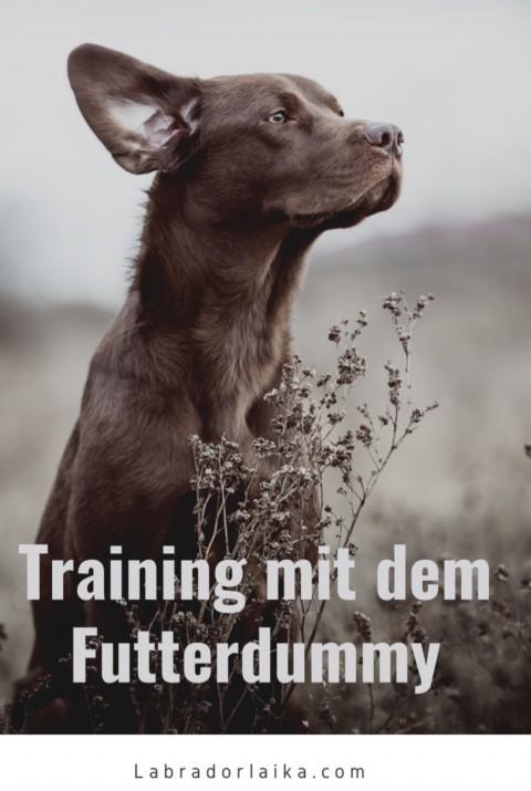 Training mit dem Futterdummy