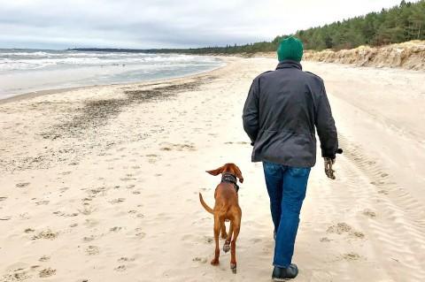 Hundeurlaub an der polnischen Ostsee