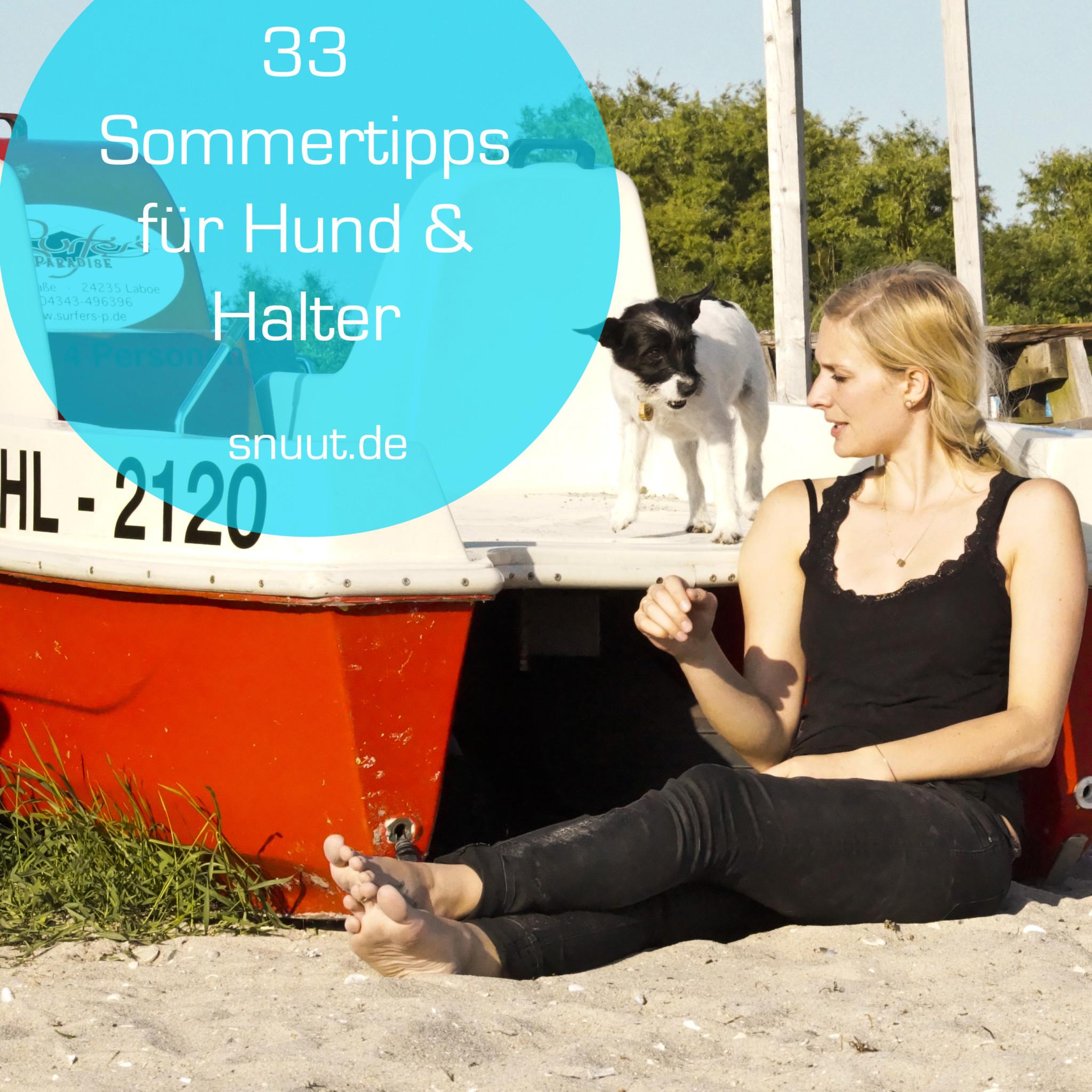 33 sommertipps für Hund und Halter