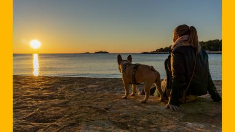 Urlaub mit Hund in Istrien, Kroatien – Teil 2