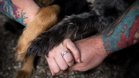 Unsere Hochzeit – mit Hund ❤