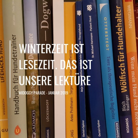 [miDoggy Parade] Winterzeit ist Lesezeit. Das sind unsere Lieblingslektüren.