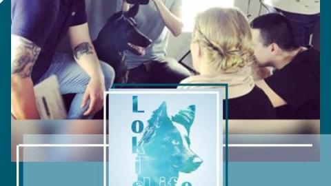 Lokis Tagebuch: Ich bin berühmt (03. Mai 2018)