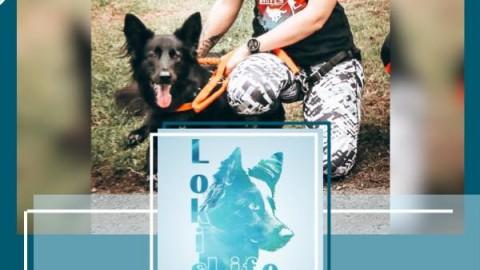 Lokis Tagebuch: Loki im Olymp (17. September 2019)