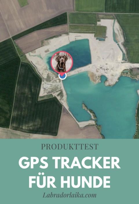 Produkttest: GPS Tracker für Hunde von Tractive