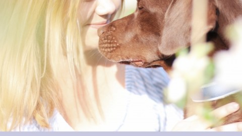 Alltag mit Hund – Der ganz normale Wahnsinn