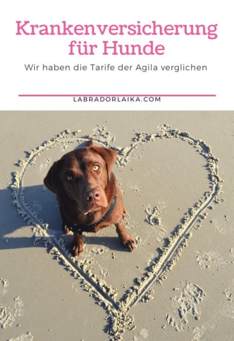 Vergleich der Tarife Krankenversicherung für Hunde