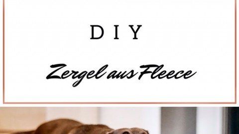 DIY Zergel aus Fleece