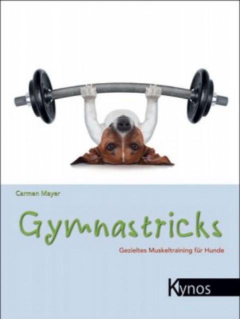 Gymnastricks – Rezension