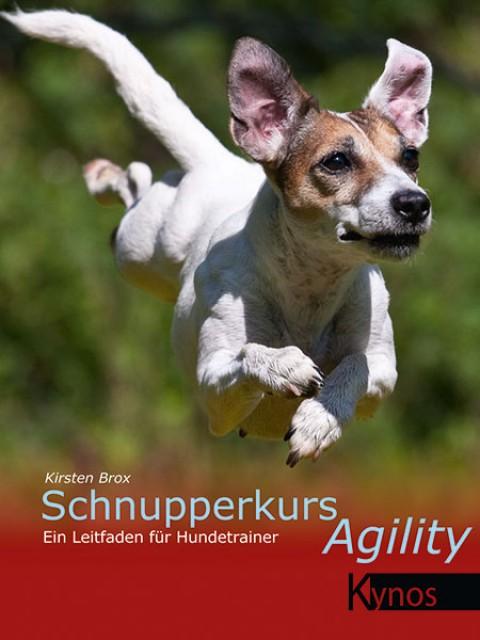 Schnupperkurs Agility – Rezension