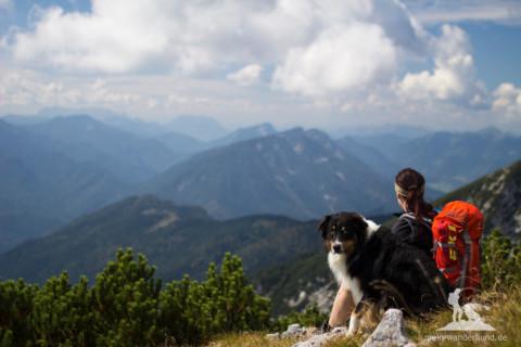 Was Ihr schon immer übers Bergwandern mit Hund wissen wolltet