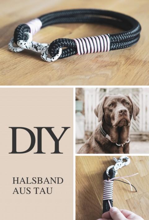DIY Halsband aus Tau