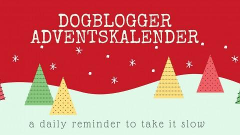Der Dogblogger Adventskalender – Hier kommt Türchen Nummer 8