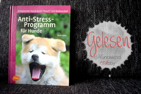 Anti-Stress-Programm für Hunde – Werbung –