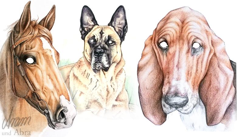 Aram und Abra_Tierportraits_Wie kommt die Seele ins Bild_Hunde_Augen