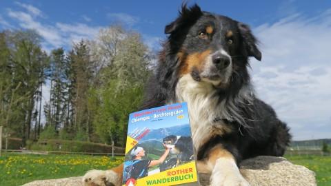 Buch Wandern mit Hund Chiemgau – Berchtesgaden – Salzburg: Die neue, zweite Auflage ist lieferbar!