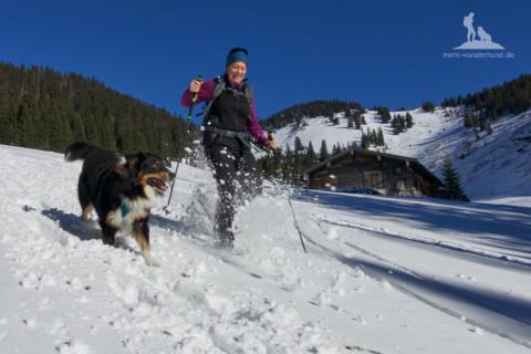Fünf Tipps zum Schneeschuhwandern mit Hund