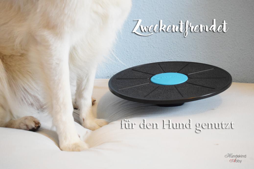 Balanceboard - zweckentfremdet für den Hund