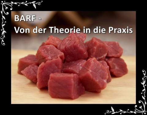 [Gastartikel] BARFEN – Von der Theorie in die Praxis