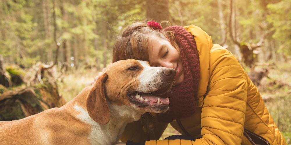 Beitraege Nachhaltigkeit Hundeblog Hund