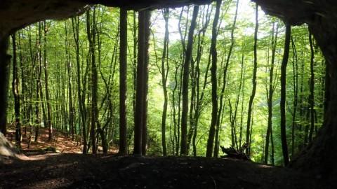 """""""Hirschbacher Höhlenrundweg"""" – Kombination Weg # 2 und # 3"""
