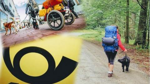 """Hundeernährung unterwegs – """"Transport- und Beschaffungsmöglichkeiten von Hundefutter auf Trekkingtouren"""""""