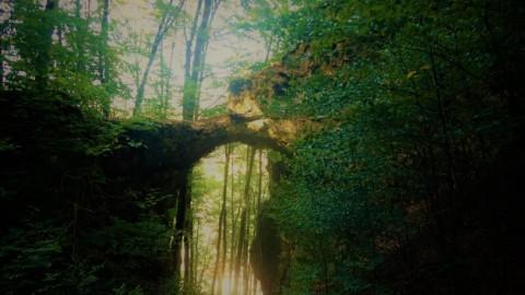 Von der Kindinger Klause zum Felsentor Unteremmendorf – Wandern im Altmühltal
