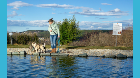 Urlaub im hundefreundlichen Wellnesshotel Larimar in Stegersbach, Burgenland