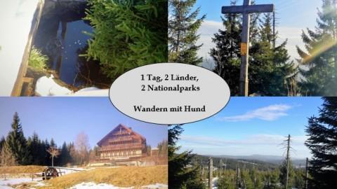 Wanderung zum Siebensteinkopf und zur Moldauquelle – Wandern mit Hund im Bayerischen Wald & Böhmerwald