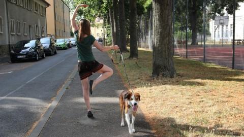 Besoffene Ballerina auf Speed. Oder: Wie ich solche Hundebegegnungen hasse
