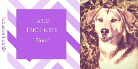 "Tabus Trick-Kiste: ""Bleib"""